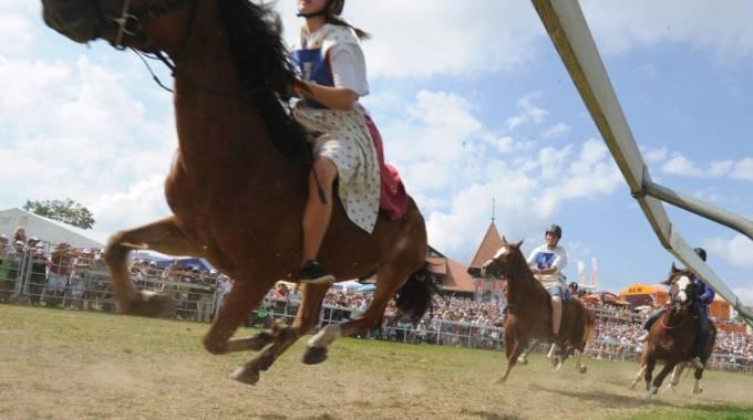 Il MIPAAF torna indietro di 50 anni: adesso i cavalli di PSI possono tornare a correre anche nelle piazze