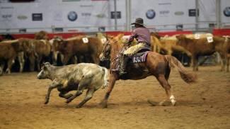 WesternShow: a Fieracavalli il mondo e le discipline dei cow-boy