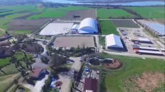 Umbria: la Play Horse Farm si candida per il Campionato Italiano Assoluto 2016